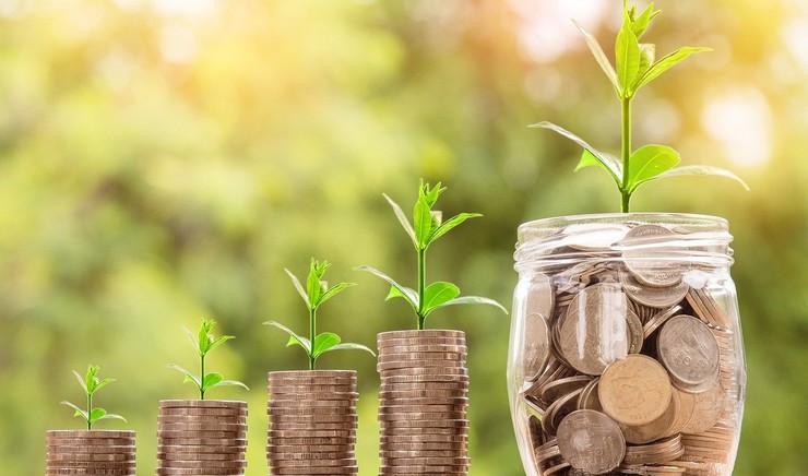 Der vokser grønt ud af stabler af penge