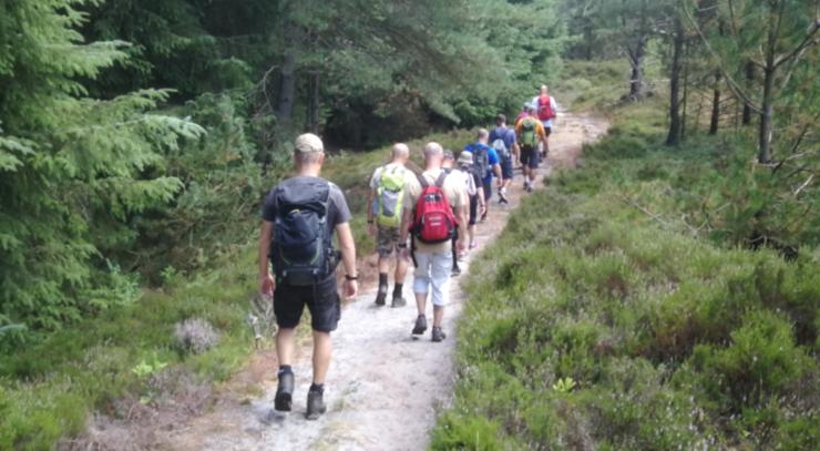 Pilgrimsvandring i skoven