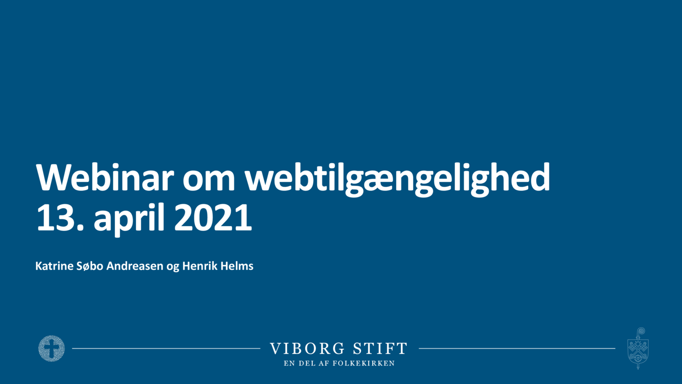 210413_1_Webtilgængelighed.pdf