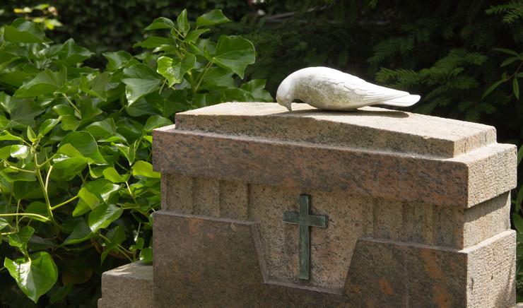 Due på gravsten